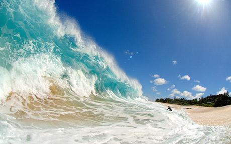 wave_1462519c